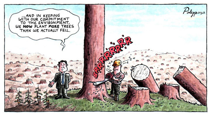 http://www.polyp.org.uk/cartoons/environment/polyp_cartoon_sustainable_forestry.jpg